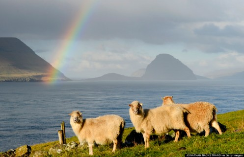 FAROE ISLANDS-NATURE-FEATURE